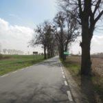 Droga powiatowa nr 1280C Plewno – Różanna 1