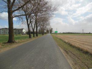 Przebudowa drogi powiatowej nr 1252C Jeżewo – Świecie Etap II 1